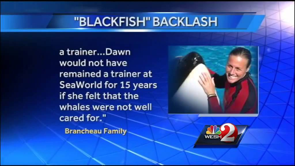 SeaWorld, family of trainer killed respond to 'Blackfish ...