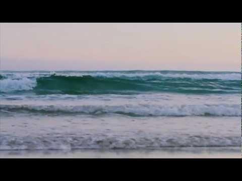 Derek Morrison   Dunedin Light   Insiders Dunedin
