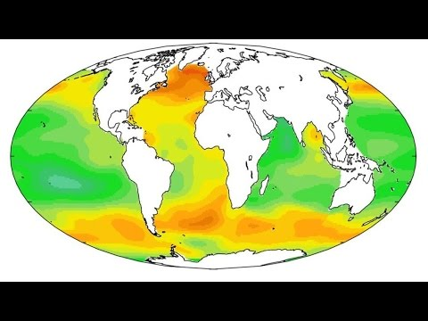 Ocean Acidification - The Facts - Dr Patrick Moore