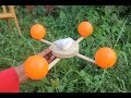 ✓Amazing Science Experiments At Home Science Tricks Cool Science Experiments!!