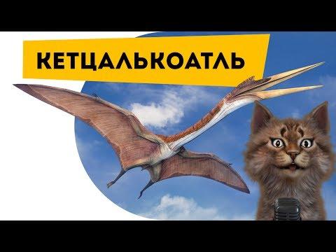 Кетцалькоатль | Самое интересное про динозавров | Наука для школьников | Семен Ученый [60fps]