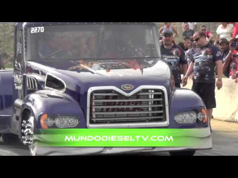 DRAG RACING TRUCKS PUERTO RICO DUMONT TRANSPORT VS ALMA LIBRE