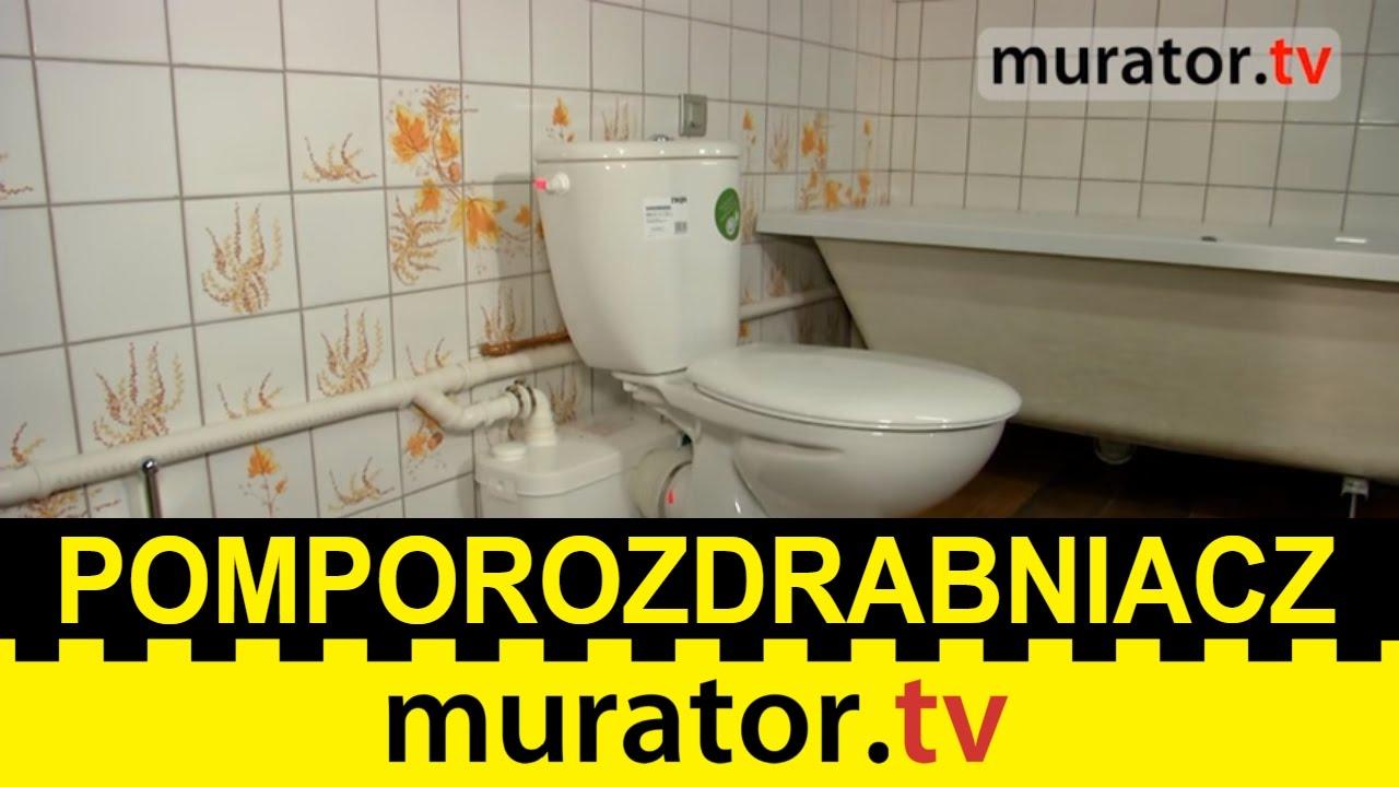 Jak Urządzić łazienkę W Piwnicy Wykorzystaj Pomporozdrabniacz