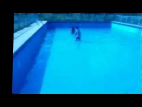 rorro y andrea sexo en la piscina youtube