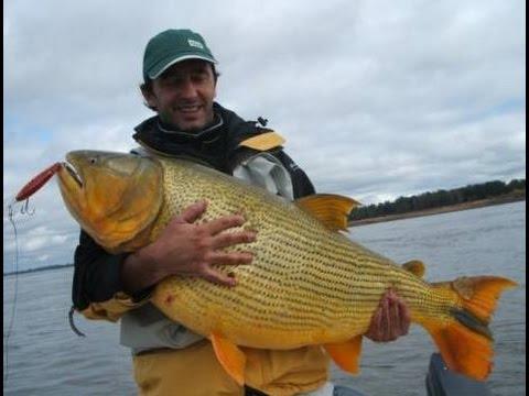 Fiesta rio santa fe argentina 05 - 3 10
