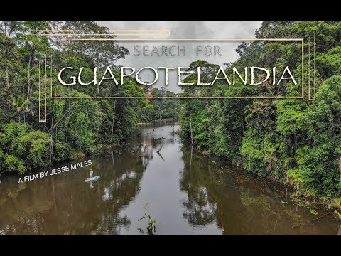Search For Guapotelandia - Rainbow Bass On The Fly