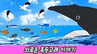 한국어ㅣ의로운 혹등고래 이야기, 어린이 동물 만화, 신생대 동물 이름ㅣ꼬꼬스토이