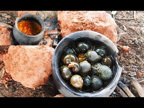 Snails Curry - Snails Catch n Cook in Pot - Escargot Stew and Eat - Escargot Recipe in Village