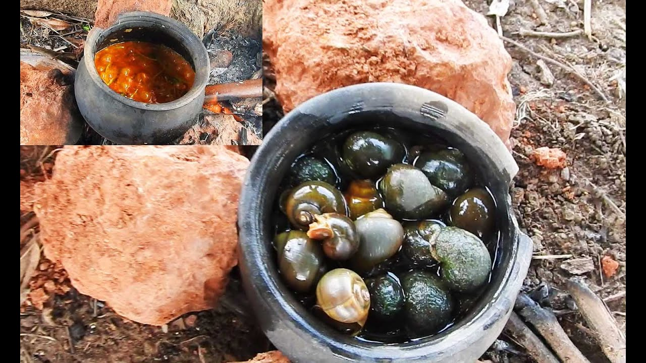 8 Recipes All About That Cream Of Mushroom Richness additionally One Mans Disgusting Food Is Another additionally Escargot Recipe Without Shells additionally 32 Cor  De Glace Au Chocolat likewise The Art Of French Cuisine France A Haven For Food Lovers. on recipe for escargot