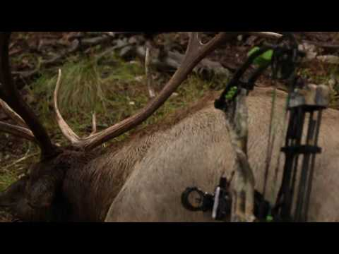 Bone Collector - Bobcat Elk in New Mexico - Outdoor Channel