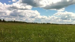 видео земельные участки на продажу
