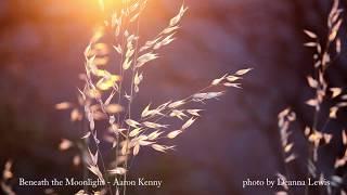 Beneath the Moonlight - Aaron Kenny [BGM/배경음악]