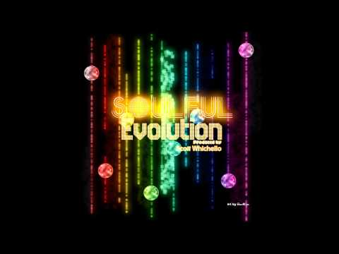 Soulful Evolution March 16th 2012 Weekly Soulful House Show HD-2012 Miami WMC 2 Hr Special! (8)