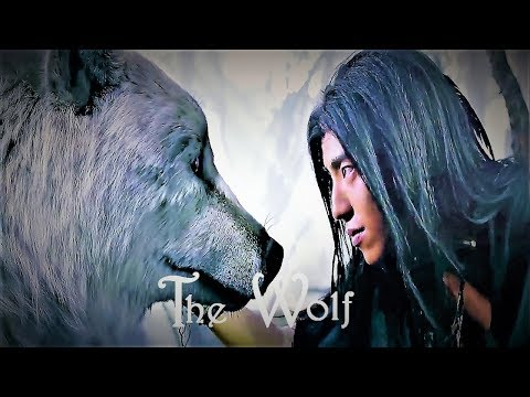 [OFFICIAL] The Wolf  狼殿下 || The Majesty Of Wolf || Upcoming Drama Chinese  || Darren Wang & Li Qin