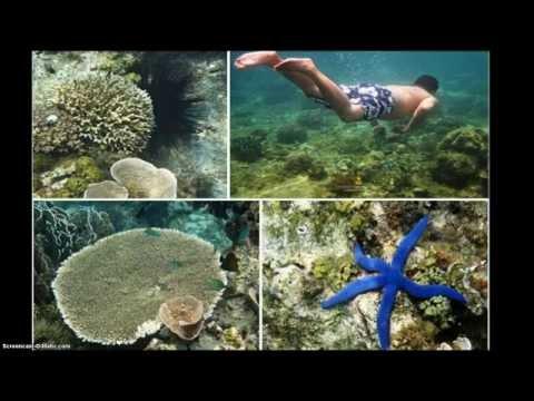 Dream a Vacation in Banton Island - World Hidden Paradise