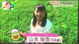 AKB48 Team8 チーム8 和歌山県代表 三八波 小久保氏 フジテレビ.