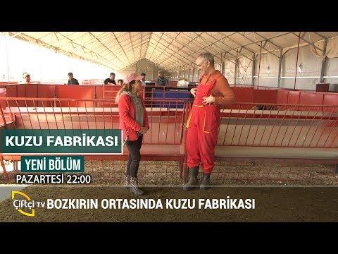 Kırşehir'de Küçükbaş Hayvan Çiftliği - KUZU FABRİKASI #küçükbaş #hayvancılık #besici