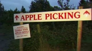 Lost in an apple orchard? Call 911