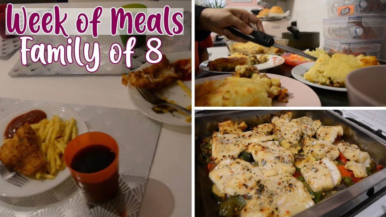 Week of Meals for a Family of 8 | Family Dinners, Meal Ideas | Shamsa