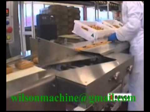 Fish products packing machine(鱼肉饼包装机)www.flow-packing-machine.com