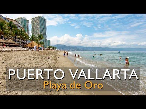 20 min. caminando por Playa de Oro, Zona Hotelera de Puerto Vallarta