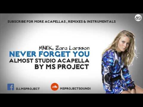 MNEK, Zara Larsson - Never Forget You (Acapella - Vocals Only) + DL