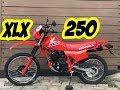 Honda Xlx 250   A Trail Que Fez História