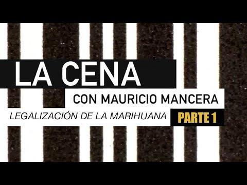 LEGALIZACIÓN DE LA MARIHUANA CON MAURICIO MANCERA PARTE 1