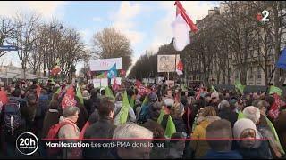 20h de France 2 - 19/01/2020
