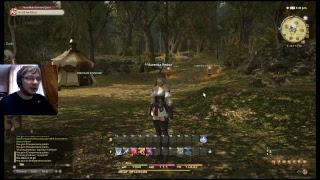 FF XIV (Final Fantasy XIV) - Обзор и второе впечатление от игры