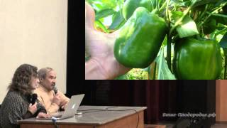 Выращивание баклажанов и перцев(Как вырастить вкусные, крупные и красивые баклажаны и перцы. Семинар проходил в Уфе 31 марта 2013 года. Ведущие:..., 2013-04-26T10:57:50.000Z)