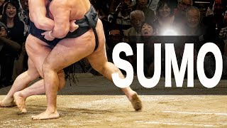 What you need to know about sumo before you go