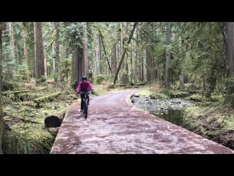 Biking the Carbon River Road in Mount Rainier National Park