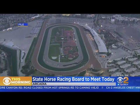State Racing Board To Meet After 25th Horse Death At Santa Anita