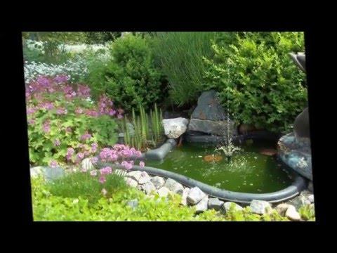Пруд  вашей мечты на даче    Декоративный водоем