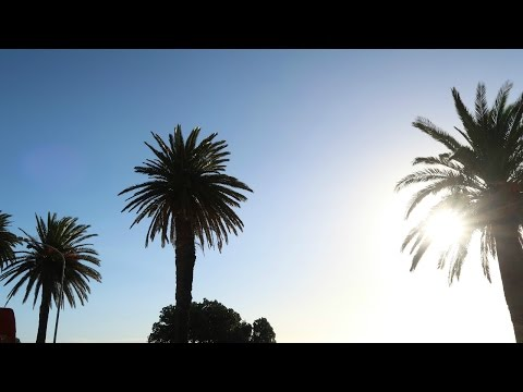 SUNSET BUS TOUR - CAPE TOWN, SOUTH AFRICA | Travel Vlog | Western Cape