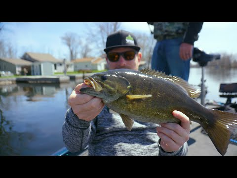 Reel Bragging Rights:  Oneida Lake Smallmouth!