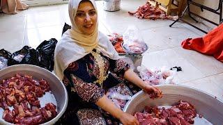 عجل العيد...🐄اكلناه وشربناه ودلعناه 🤣 وجالو يوم الضحية بيه 🍗(اول يوم العيد)