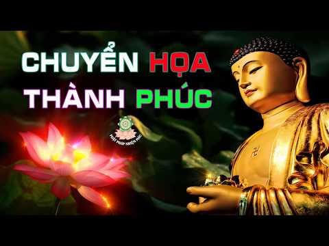 Kể Truyện Đêm Khuya - Chuyển Họa Thành Phúc - nghe Lời Phật Dạy Ưu Phiền Lo Âu Biến Mất