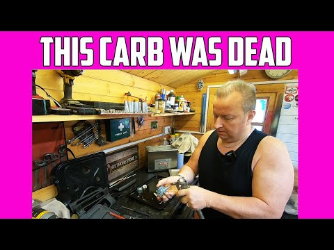 Is An Ultrasonic Cleaner A Must Have Tool For Carb Cleaning ?