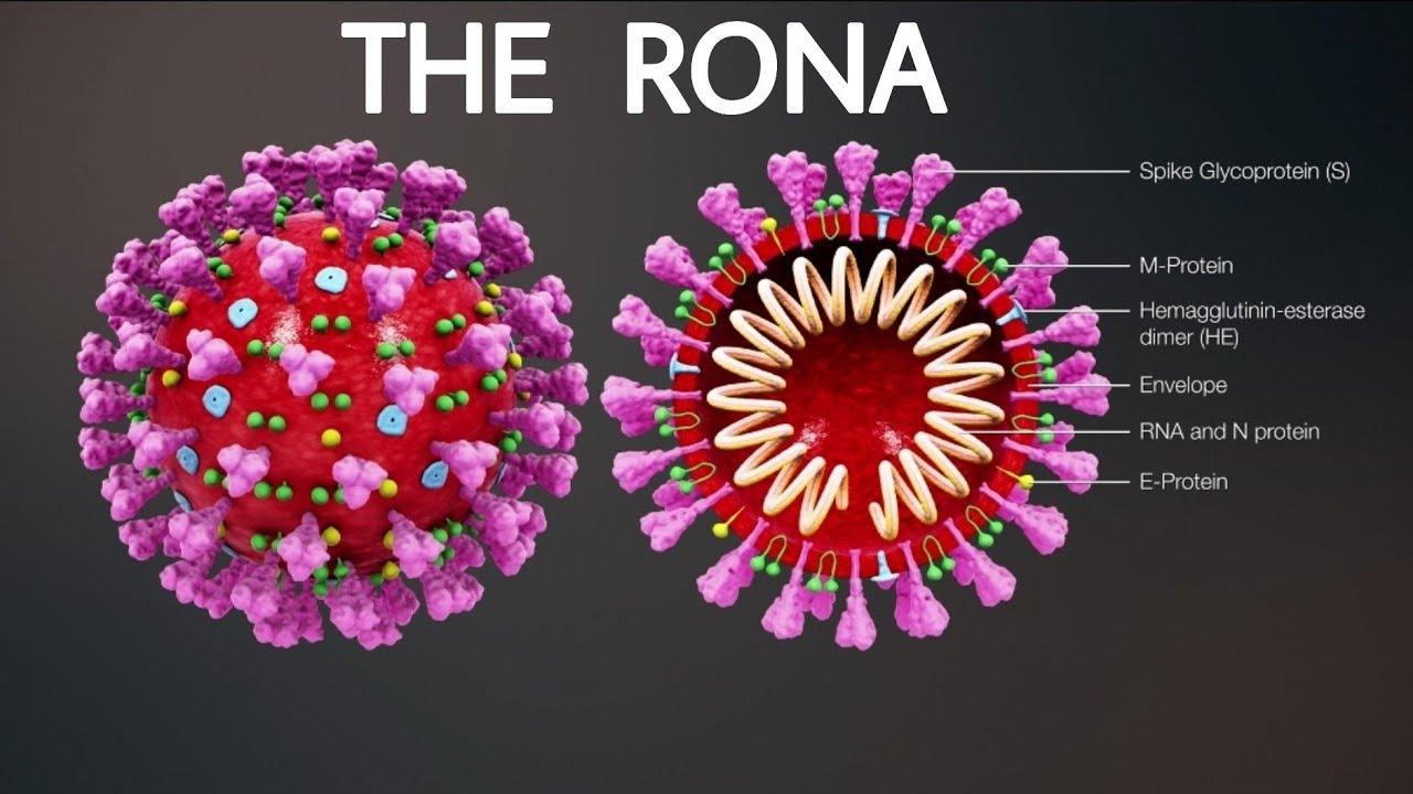 Coronavirus in Zambia