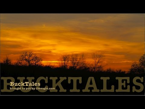 BuckTales: Mighty Cool Monday