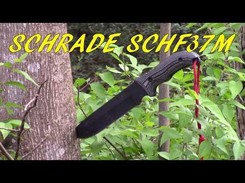 Budget survival knife