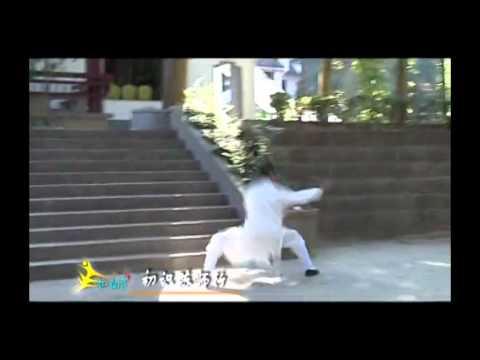 Xiang Zishi Longhua Quan 向资师 龍華拳