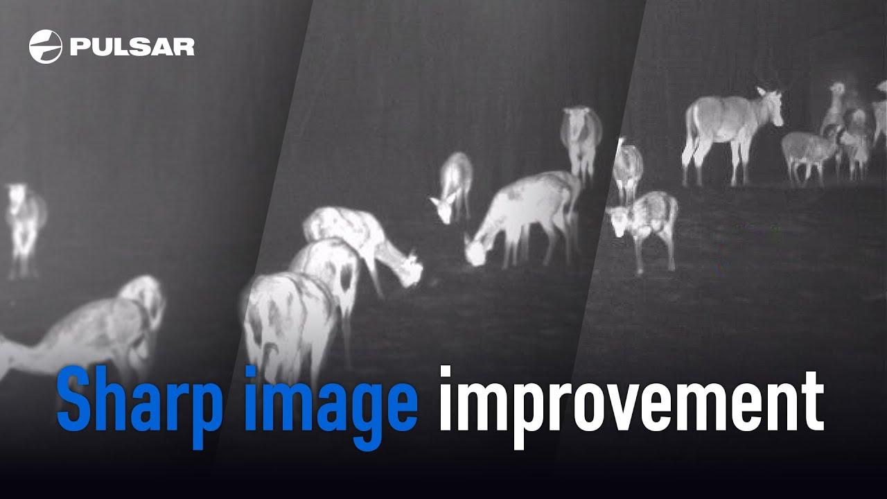 Firmware Update: Image and Video Enhancement | Pulsar