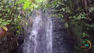 Blue Mountain Jamaica Tours | Hiking, Cycling and Scenic Waterfalls