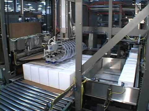 Aagard's Single or Multi Bag Cartoner and Palletizer System