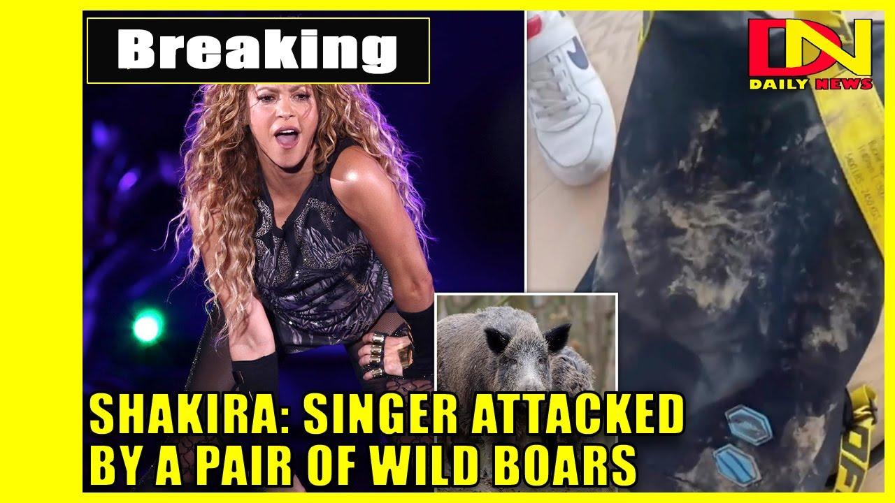 Shakira: Singer attacked by a pair of wild boars