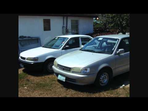 Bahamas  Stanley Pinder Car Rental.wmv