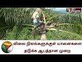 விலை நிலங்களுக்குள் யானைகளை தடுக்க ஆபத்தான முறையை கையாளும் விவசாயிகள் | Coimbatore|Mettupalayam